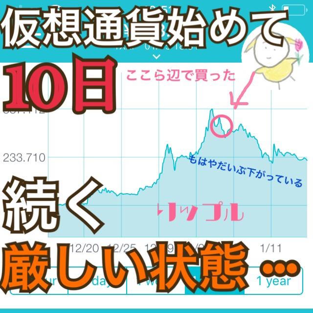 【仮想通貨】続く横横状態、投資初心者ちおひこは超ドキドキ【2018年1月中旬】